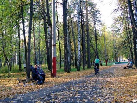 Реконструкция парка началась в Выксе