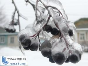 Ледяной дождь прошел в Выксе