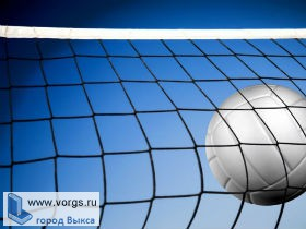 В Выксе прошел турнир по волейболу «Надежда»