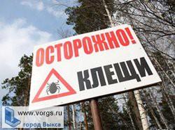 В Нижегородской области начинается сезон клещей