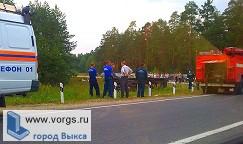 В ДТП на трассе Выкса - Сатис пострадали 3 человека