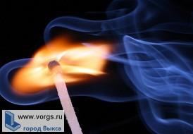 Уголовник поджег ОАО «Выксалес»