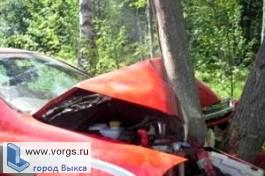 «Рено» вылетел в кювет и врезался в дерево