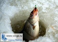 В Кулебаках прошло соревнование по «Русской мормышке»