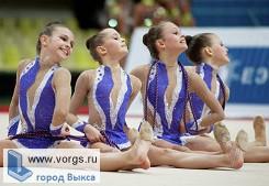 В Выксе пройдут соревнования по художественной гимнастике