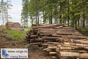 Выксунец незаконно занимался вырубкой леса
