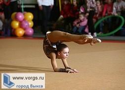 Гимнастки из Выксы представили город на турнире в Коврове