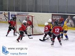 Выксунские хоккеисты показали отменные результаты на соревнованиях в Муроме и Кстово