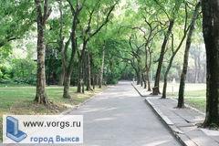 В Выксунском парке КиО совсем скоро появится «Тропа здоровья»