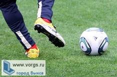 В Выксе прошел турнир по мини-футболу
