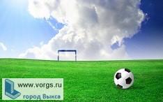 Бывшие футболисты «Металлурга» теперь играют в составе «Химик»