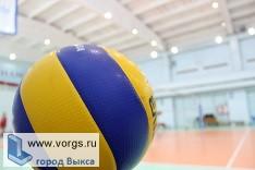 Спортсмены из Выксы заняли первое место на первенстве по волейболу