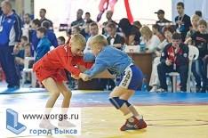 В Выксе пройдет турнир по спортивному и боевому самбо