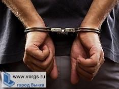 Полицейские из Рязани задержали преступника в Выксе