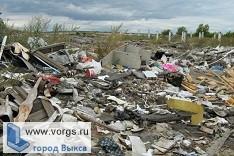 В Выксе потратят 400 тысяч на уборку свалок