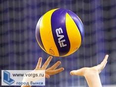 В Выксе проведут первенство Нижегородской области по волейболу