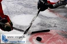 Выксунские хоккеисты заняли 2 место на Всероссийском турнире по хоккею