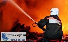 В д. Гагарская сгорел дом